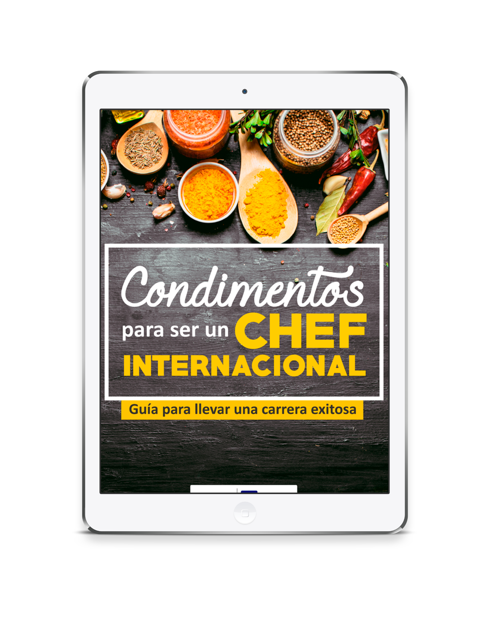 Guía Condimentos para ser un chef internacional